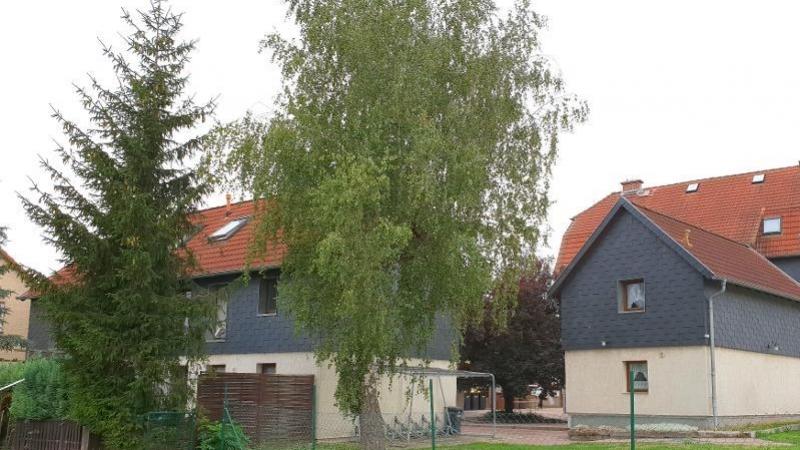 1 Wohnung mit 52 m² Wohnfläche.
